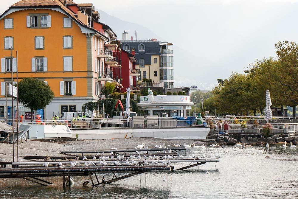 vevey, 沃韋, 瑞士景點, 瑞士自由行, 雷夢湖, 卓别林, 雀巢, 瑞士自助旅行