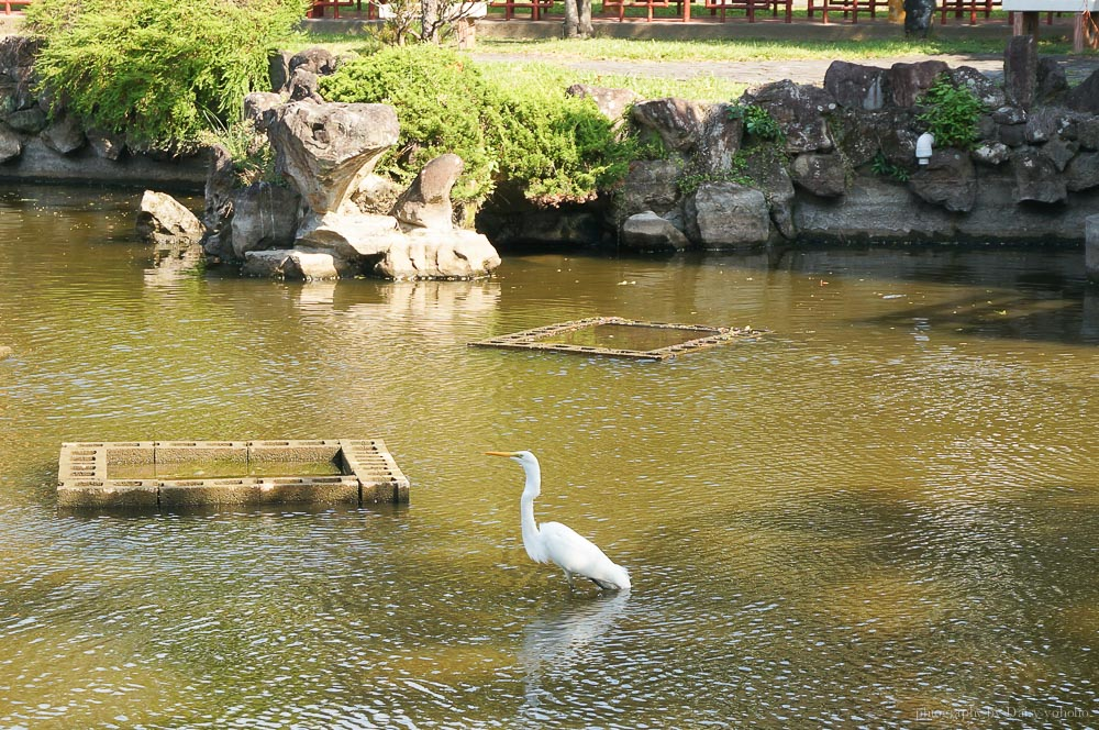 台北景點, 士林官邸景點, 士林雙溪公園步道, 新北雙溪公園
